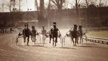 Further charges for harness racing figures as probe continues