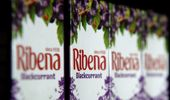 In the UK the threat of a sugar tax caused Ribena to reduce their sugar content by 50 percent. Photo / Getty Images