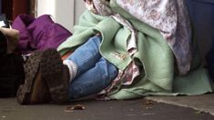 Fiona Hamilton: Auckland to conduct first homelessness count tonight