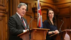 Winston Peters reportedly has banned people from using the term 'Labour-led Government'. (Photo / Getty)