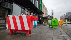 Christchurch's urban sheep to be auctioned at the A & P Show