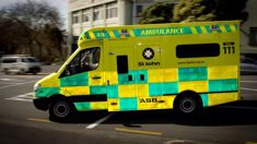 Child critical after nearly drowning in Rolleston