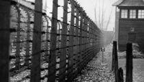 Holocaust survivor recounts harrowing experience in concentration camp