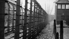 Bob Narev: Holocaust survivor recounts his harrowing experience in a concentration camp