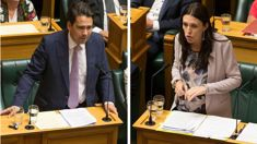 Simon Bridges labels Jacinda Ardern 'Fleecer in Chief'