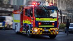 Fire crews called out to Christchurch plant nursery