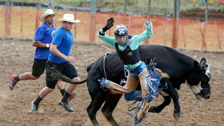 Calls for further restrictions as Rodeo season begins