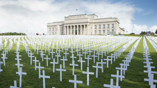 18,000 crosses at Auckland Domain to mark 100 years of Armistice