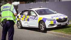 Three police cars rammed during Napier pursuit