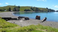Dion Hodder, 16, fell ill during a St John Youth camp on Motutapu Island. (Photo / file)