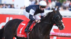 James McDonald says he's excited and ready for Melbourne Cup