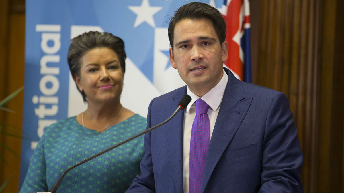 Peters says the party will want the heat to pass before getting rid of their leaders. (Photo / NZ Herald)