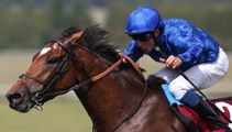 Cross Counter wins Melbourne Cup