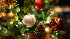 Kate Hawkesby: What's wrong with putting your Christmas tree up in November?