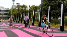 Mike's Minute: Cycleways exposed as the sham they are