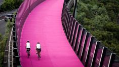 Andrew Dickens: Don't believe the fake news about Auckland's cycleways