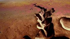 Meghan Bartels: Nasa spacecraft successfully lands on Mars