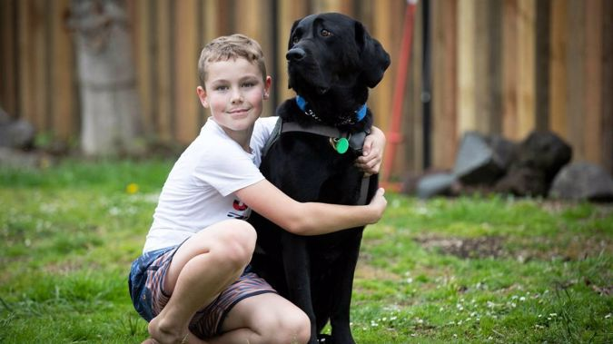 Noah Wheeler and his family were turned away because of the presence of Nitro. (Photo / NZ Herald)