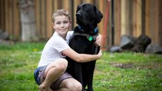 Autistic boy with assistance dog turned away from McDonald's