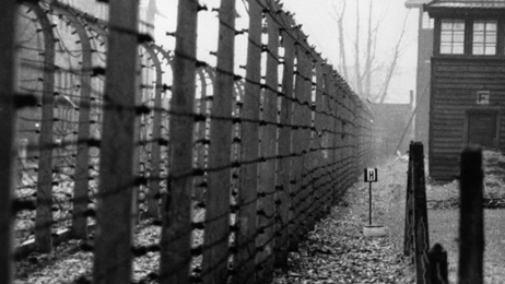 Expert shocked by lack of Holocaust knowledge