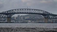 Incredible survival: Man falls from car, leaps off Harbour Bridge