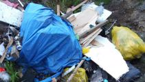 Andrew Dickens: New Auckland dump is a rubbish idea