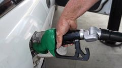 Current global trends suggest a drop in fuel prices. (Photo / File)