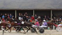 New harness racing charge alleges horse was drugged