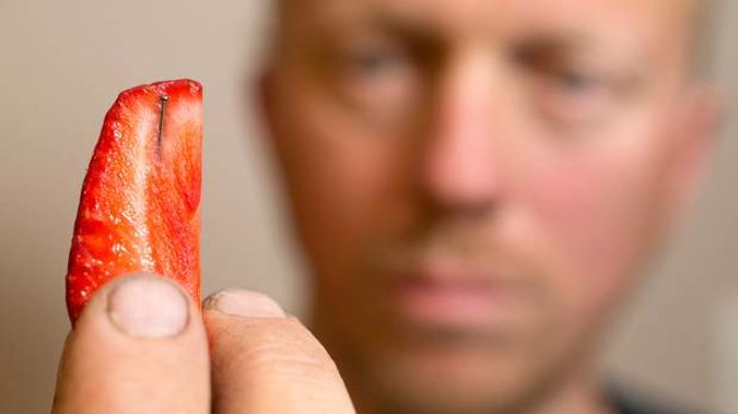 Tauranga man Michael Rayner pictured with the strawberry he brought from a local supermarket only to find it contained a pin. Photo / Alan Gibson