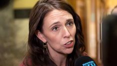 Jacinda Ardern says she needs to change phone number after controversial Sroubek text