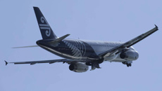 Tim Shadbolt: Air New Zealand eyes new Auckland-Invercargill service