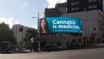 'Cannabis is medicine': NZ-first ad campaign launched