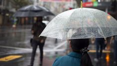 Rain and wind settles in before Christmas