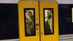 Train brawl at Glen Eden station captured on video