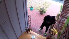 Former NASA engineer admits parcel thief revenge video was partially staged