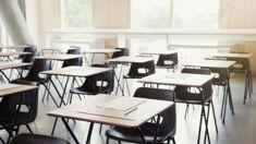 Steven Hargreaves and Bali Haque discuss Tomorrow's Schools