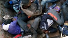 English Channel sees uptick in migrants trying to cross over