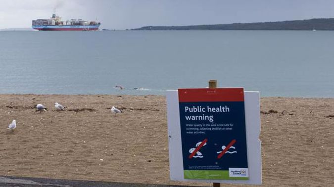 Eight beaches in West Auckland and two in central Auckland have been ruled out as no-swim zones.. Photo / Greg Bowker
