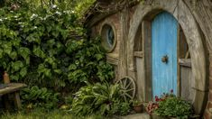 Jan Barnes: Traffic woes stop Hobbiton from boosting visitor numbers