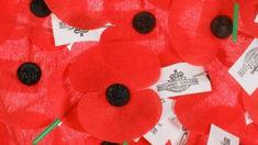 Barry Clark: 30,000 young veterans still need RSAs