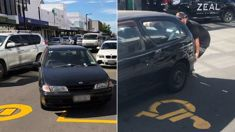 Instant karma for driver who created traffic mayhem in Napier