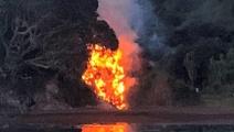'Kiwis scream' in bush fire at historic site