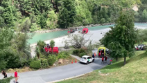 Absolute chaos' at Shotover jet after falling tree injures five
