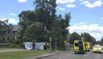 Man rescued after being trapped under tree in Chch