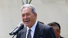 Winston Peters not ruling out tax breaks for industries struggling to find NZ staff