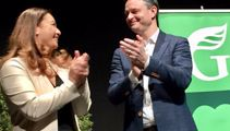 James Shaw doubts a 'blue-green' party would survive