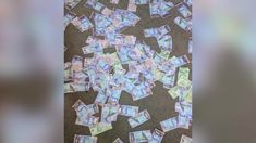 Kiwi student arrives home to find floor covered in cash