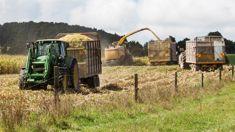 Matthew Tukaki: Huge potential for Maori land under new Government scheme