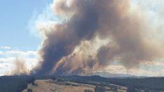 Firefighters battle large blaze near Nelson