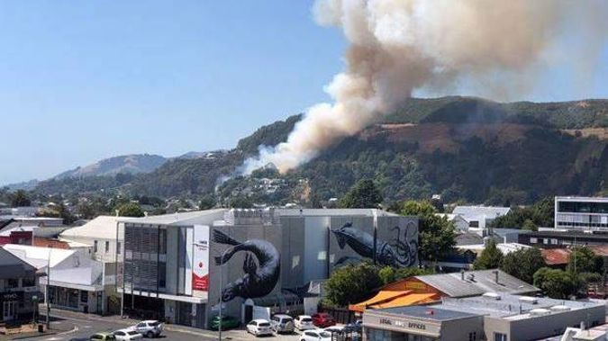 The fire at Walters Bluff in Nelson on Friday afternoon. (Photo / Nelson Weekly)
